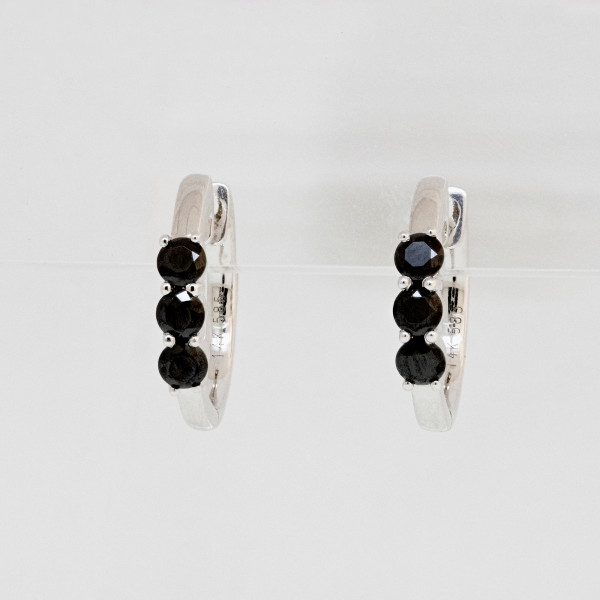 Anticipation Earrings with Black Accents - 14k White Gold