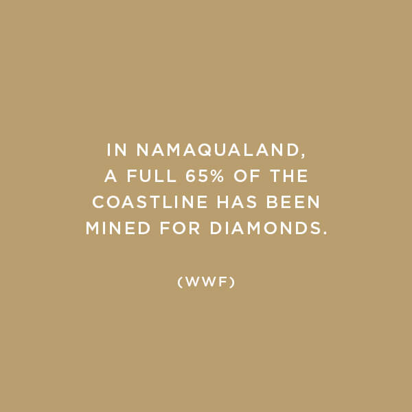 Environmental Impact, Habitat Destruction, In Namaqualand, a full 65% of the coastline has been mined for diamonds. (WWF)
