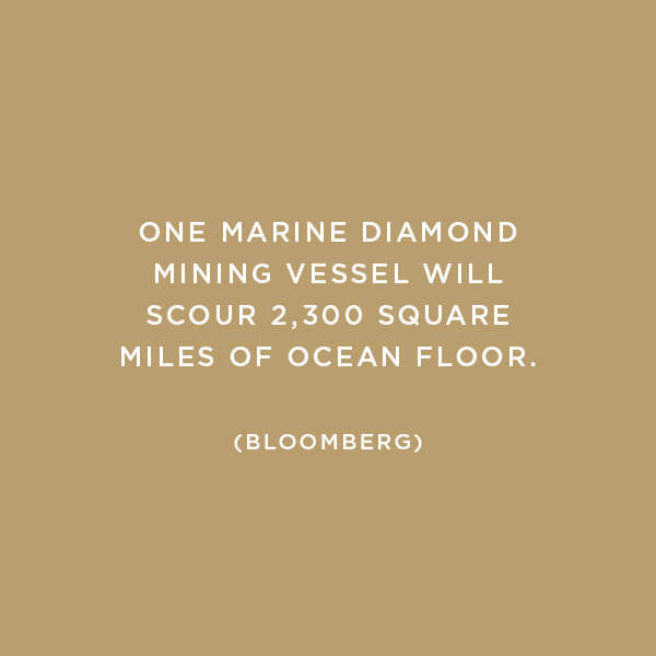 Environmental Impact, Ocean Mining, One marine diamond mining vessel will scour 2,300 square miles of ocean floor. (Bloomberg)
